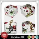 Christmas_170_small