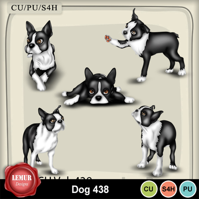 Dog_438