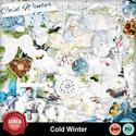 Cold_winter1_small