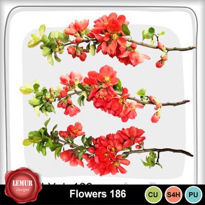 Flowers186