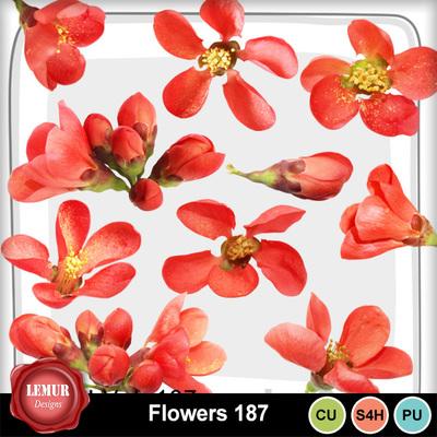 Flowers187