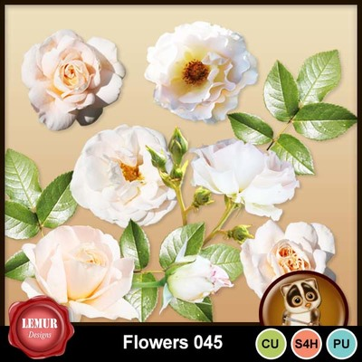 Flowers045