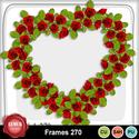 Frames_270_small