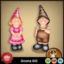 Gnome043_small