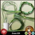 Grass029_small