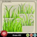 Grass452_small