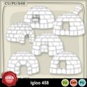 Igloo458_small