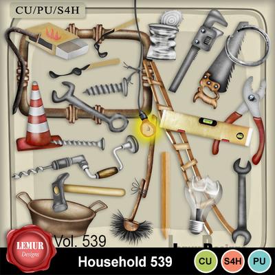 Household539