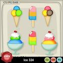 Ice324_small