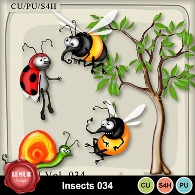 Insects034