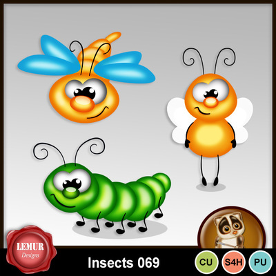 Insects069