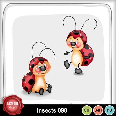 Insects098