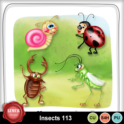 Insects113