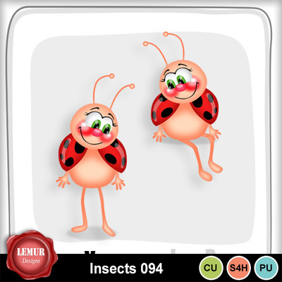 Insects094