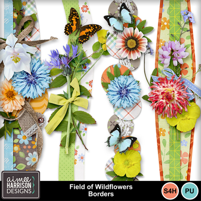 Aimeeh_fieldofwildflowers_borders