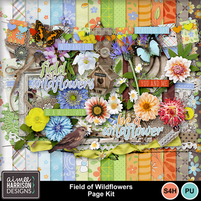 Aimeeh_fieldofwildflowers_kit