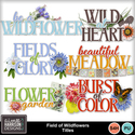 Aimeeh_fieldofwildflowers_titles_small