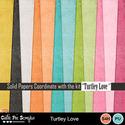 Turtley_love__12__small