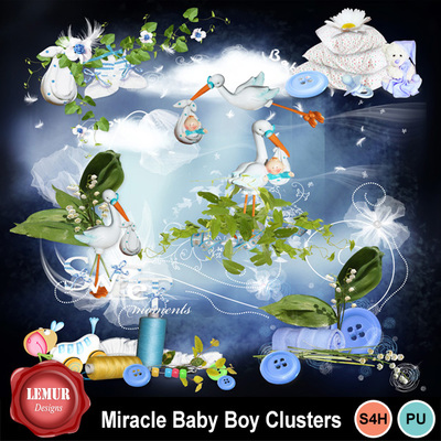 Miracle_baby_boy_cl
