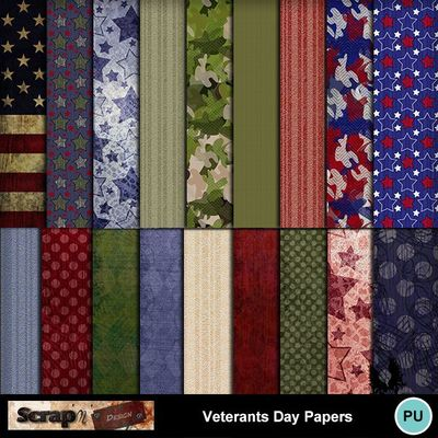 Veterants_day_papers