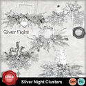 Silver_night_cl_small