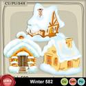 Winter582_small