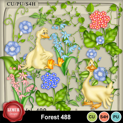 Forest_488