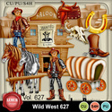 Wild_west627_small
