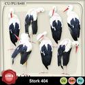 Stork404_small