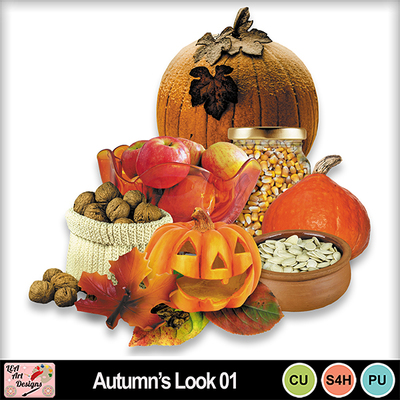 Autumn_s_look_01_preview