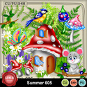Summer605_small