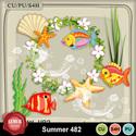 Summer482_small