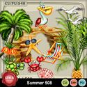 Summer508_small