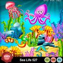 Sea527_small
