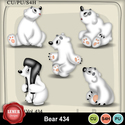 Bear434_small