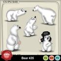 Bear435_small