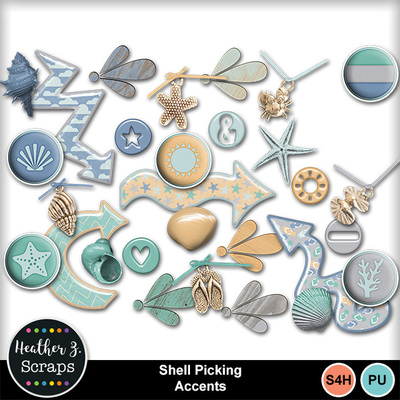 Shell_picking_5
