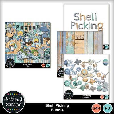 Shell_picking_1