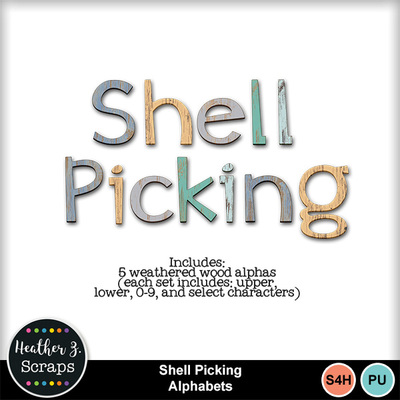 Shell_picking_4