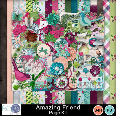 Pbs_amazing_friend_pkall