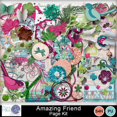 Pbs_amazing_friend_pkele