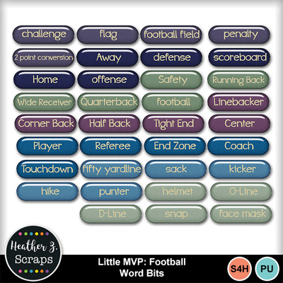 Little_mvp_football_6