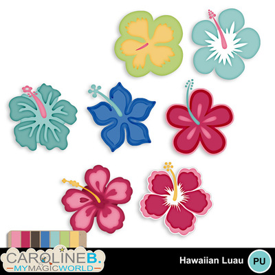 Hawaiian-luau-hibiscus_1
