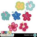 Hawaiian-luau-hibiscus_1_small