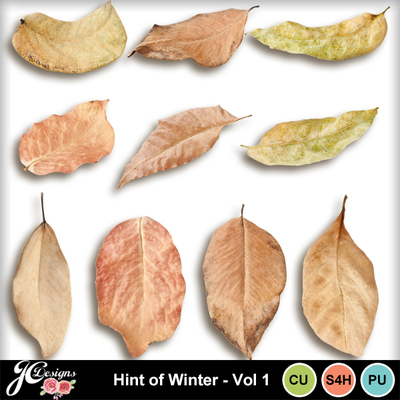 Hint_pof_winter-vol_1