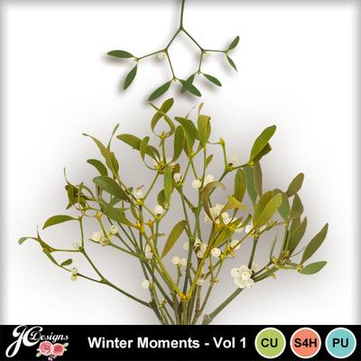 Wintermomentsvol1