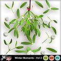 Wintermomentsvol2_small