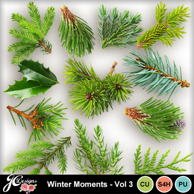 Wintermomentsvol3