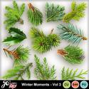 Wintermomentsvol3_small