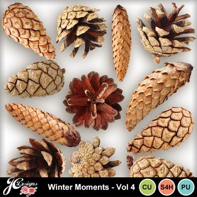 Wintermomentsvol4